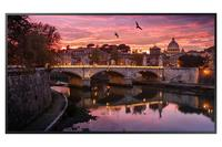 Samsung QB55R 4K Ultra HD 54.6 inch LED large format display 3840 x 2160 8